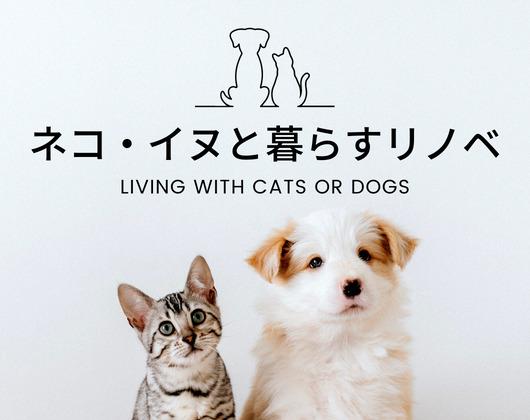 ネコ・イヌのいる暮らし×リノベーション