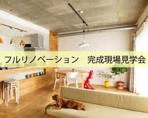 urayasu shinurayasu toyosu kansei renovation