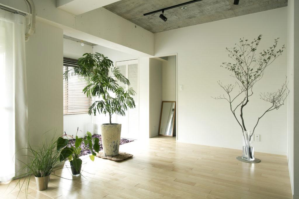 インダストリアル部屋の観葉植物